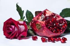 Granatapfel und Rotrose Lizenzfreies Stockfoto