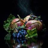 Granatapfel und wilde Trauben auf einem schwarzen Hintergrund Lizenzfreies Stockbild