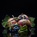 Granatapfel und wilde Trauben auf einem schwarzen Hintergrund Stockbilder