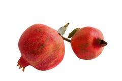 Granatapfelfrüchte Stockfoto