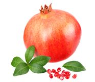 Granatapfelfrucht lokalisiert auf einem weißen Hintergrund stock abbildung