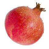 Granatapfel lokalisiert Lizenzfreies Stockbild