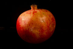 Granato isolato rosso sui precedenti neri Fotografia Stock Libera da Diritti