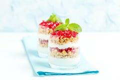 Granatowa parfait - słodki organicznie płatowaty deser z granola płatkami, jogurtem i czerwonymi dojrzałymi owoc ziarnami, fotografia royalty free