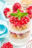 Granatowa parfait - słodki organicznie płatowaty deser z granola płatkami, jogurtem i czerwonymi dojrzałymi owoc ziarnami, obraz stock