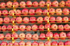 Granatowiec owoc tło cytrusa cytrusów świeży grupowy pomarańczowy tangerine biel Rynek w Istanbuł Obraz Stock