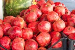 Granatowiec owoc tło cytrusa cytrusów świeży grupowy pomarańczowy tangerine biel Rynek w Istanbuł Zdjęcia Royalty Free