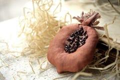 Granatowiec stylizujący garnet naturalny Broszki tkanina Handmade biżuteria Zabawkarska owoc Granat w sekcji Wystrój dla kuchenne zdjęcie stock