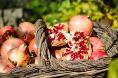 Granatowowie w, znacząco karmowy nadprograma bogactwo w witaminach i przeciwutleniacze koszykowej, sezonowej owoc, obrazy royalty free