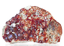 Granatrött Arkivbild