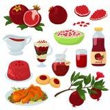 Granatrött för frukt för sund mat för granatäpplevektor röd mogen och ny frukt- uppsättning för illustration för fruktsaftgelédri vektor illustrationer