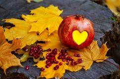 Granaty, serce, liście klonowi na drzewnym fiszorku obraz royalty free