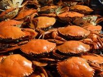 Granchi ed altri frutti di mare fotografia stock