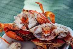 Granchio bollito o cotto a vapore del fiore al mercato dei frutti di mare Fotografia Stock Libera da Diritti