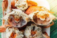 Granchio bollito o cotto a vapore del fiore al mercato dei frutti di mare Immagine Stock