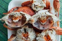 Granchio bollito o cotto a vapore del fiore al mercato dei frutti di mare Fotografie Stock Libere da Diritti