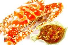 Granchio cotto a vapore del mare con la salsa di frutti di mare in isolato in Immagine Stock Libera da Diritti