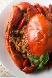 Granchio del peperoncino rosso immagini stock