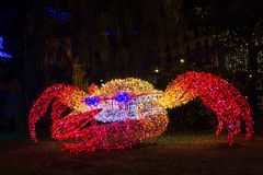 Granchio delle luci di Natale Immagine Stock
