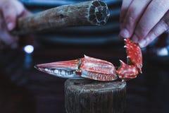 Granchio di moneta falsa sulla tavola Immagini Stock
