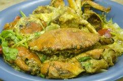 Granchio fritto in salsa di curry Fotografia Stock Libera da Diritti
