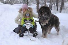Grand amour pour des enfants et des animaux Images stock