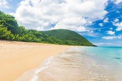 Grand Anse Beach Royalty Free Stock Photo