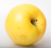 grand Apple jaune Image libre de droits