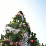 Grand arbre de Noël Images libres de droits