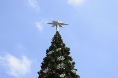 Grand arbre de Noël, Photos stock