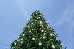 Grand arbre de Noël Photographie stock libre de droits