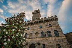 Grand arbre de Noël dans la place de Montepulciano Photos libres de droits