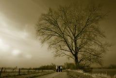 Grand arbre et petit groupe de femme Image libre de droits
