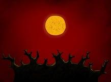 Grand arbre et pleine lune Image stock
