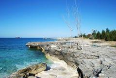 Grand Bahama Island Landscape Stock Images
