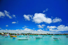 Grand Bay Lagoon Stock Image