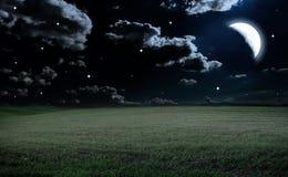 Grand beau ressort le champ avec une sorte éloignée sur une forêt Photos libres de droits