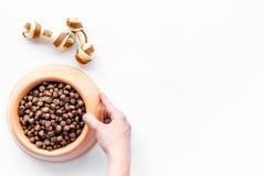 Grand bol de nourriture de chien avec la main sur la maquette blanche de vue supérieure de fond Images stock
