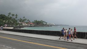 Grand bord de mer d'Hawaï d'île de Kona banque de vidéos