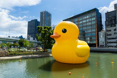 Grand canard jaune à Osaka Images stock
