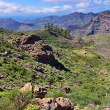 Grand Canaria landscape Royalty Free Stock Photos