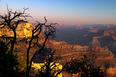 grand canyon Obrazy Royalty Free