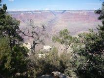 Grand Canyon 44 immagine stock