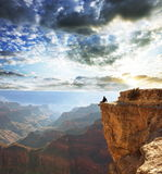 Grand Canyon. Man on cliff in Grand Canyon, USA stock image