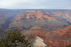 Grand Canyon panoramic view with cliffs royalty free stock image