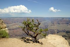 Grand Canyon 2 Stock Photography