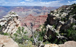 Grand canyon. In USA. One of the biggest canyons in the world Stock Image