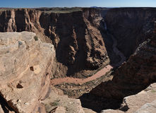 Grand Canyon royaltyfri bild