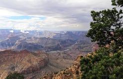 Grand Canyon Arkivbild
