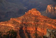 Grand Canyon 3 Stock Photos